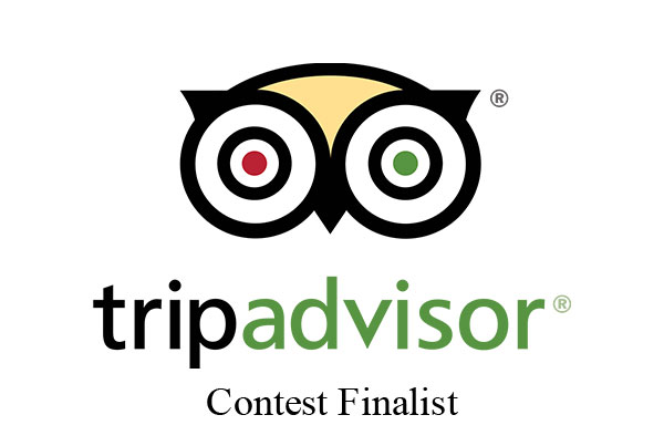 "TripAdvisor TV Ad Contest Finalist: ""Owl Eyes"""
